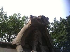 loving bears.